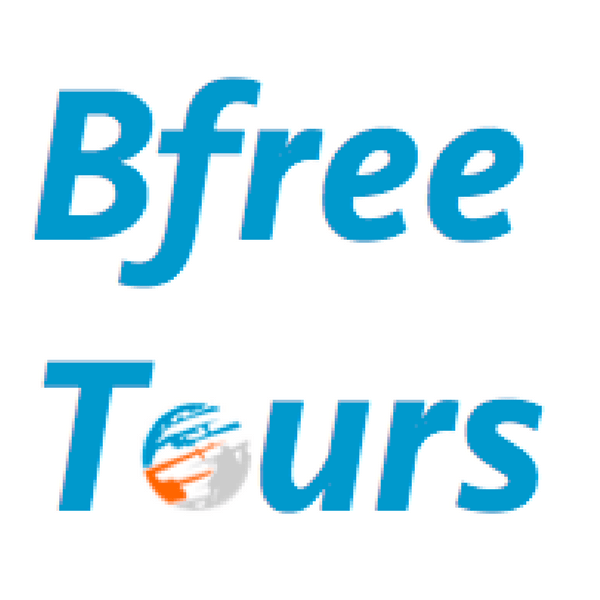Bfree Tours Logo